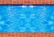 السباحة تنقل من يمارسها إلى شعور رائع من البهجة والمتعة وتقوّي العضلات والمفاصل